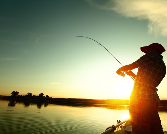Риболов и захранки