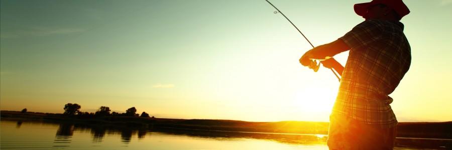 Аромати и суровини за риболов – риболовни захранки